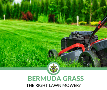 The Best Lawn Mowers for Bermuda Grass