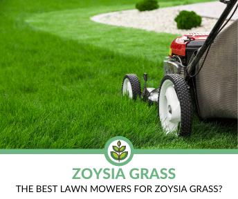 best lawn mowers for zoysia grass