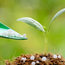 Learn more about Fertilizers