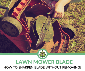 how to sharpen lawn mower blade without removing