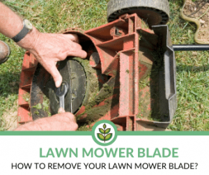 How to remove your lawn mower blade