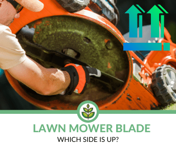 Which side of Lawn Blade is Up