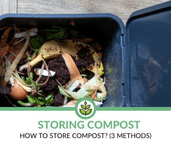 How to Store Compost?